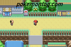 pokemon eclipse rom download