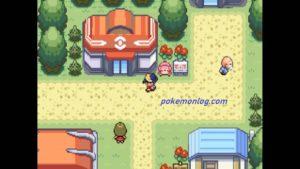 pokemon shiny gold version