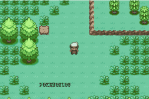 green lush jungles in amethyst pokemon game