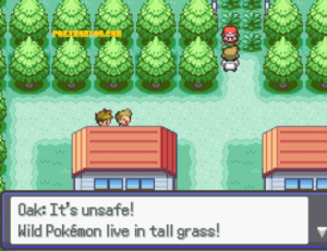 oak it is unsafe to live wild pokemon