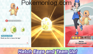hatch eggs and team up