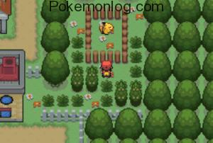 main gameplay scene