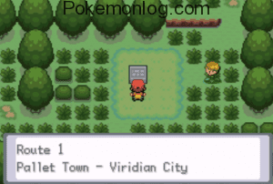 route 1 in pallet town