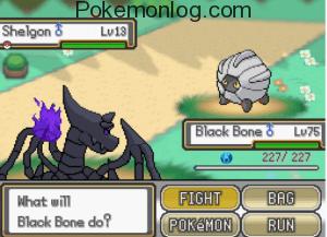 what will black bone do
