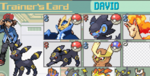 Trainer Card in the game