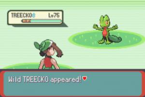 Wild Treecko appeared