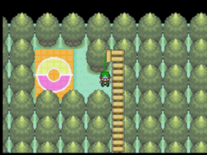 new area to explore