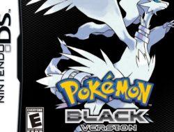 pokemon black randomizer